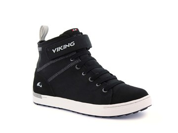 Bild på Viking